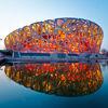Pekin: Ptasie gniazdo wciąż puste