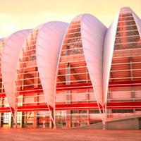 """Porto Alegre: Pierwszy """"liść"""" na placu budowy"""