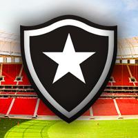 Brazylia: Botafogo nie znajdą dla siebie stadionu?