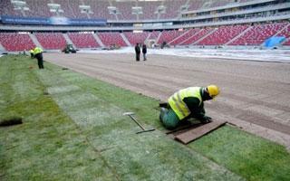 Narodowy: Trawa na trzy lata od Trawnik Producent