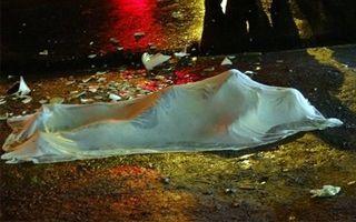 Recife: Kibic zabity muszlą klozetową