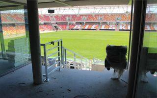 Bielsko-Biała: Murawa gotowa, stadion rzutem na taśmę