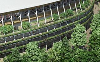 Tokio: Stadion Olimpijski wielkim parkiem
