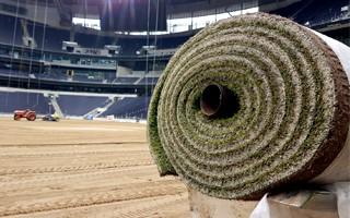 Londyn: Boisko rozwijane na stadionie Tottenhamu