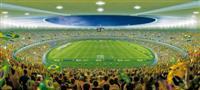 Estadio Governador Magalhães Pinto (Mineirão)