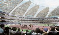 New National Stadium Japan (VII)