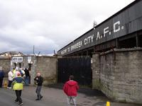 Vetch Field