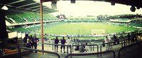 nib Stadium (Perth Oval)