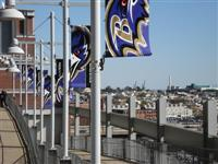 M&T Bank Stadium (Ravens Stadium)